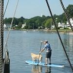 Man and dog paddling